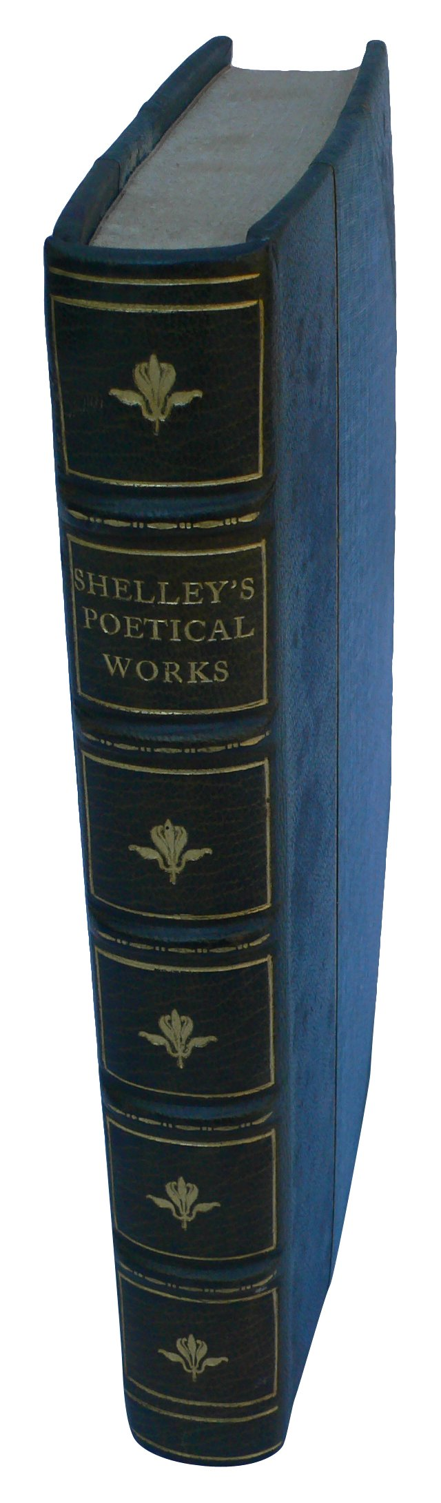 Complete Poetical Works of Shelley