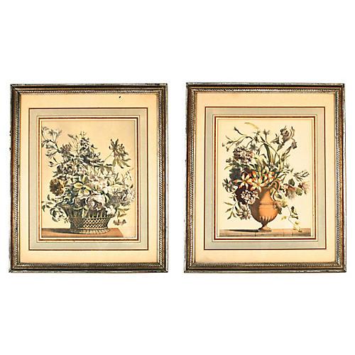 Framed Botanical Prints, Pair