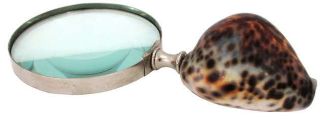 Magnifying Glass w/ Shell Handle