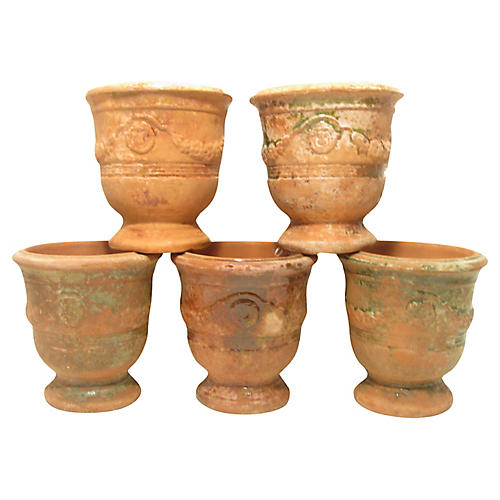 French Ampholia Anduze Urns, S/5