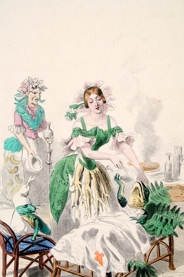 Marshmallow Lady Engraving, 1847