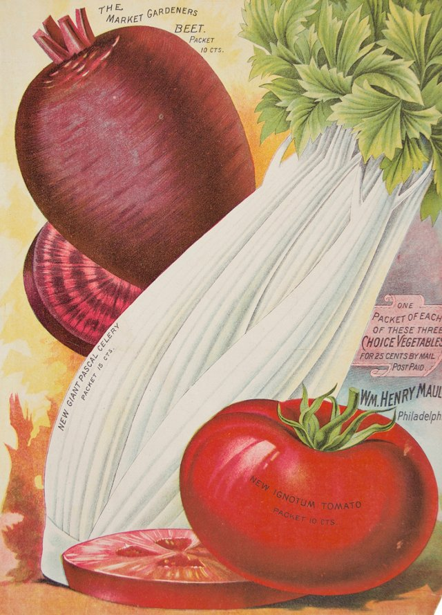 19th-C. Beet, Celery and Tomatoe