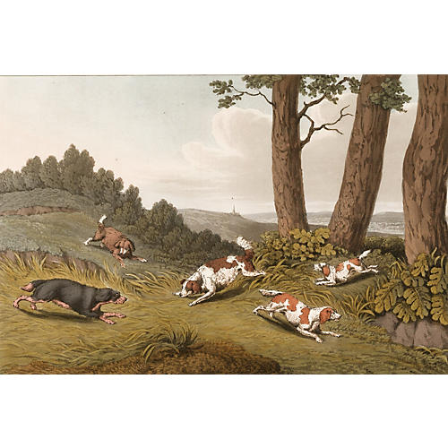 Hand-Colored Spaniel Engraving, 1820