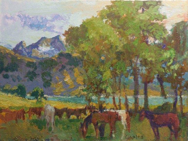 Mountain Pasture by Robert Caples