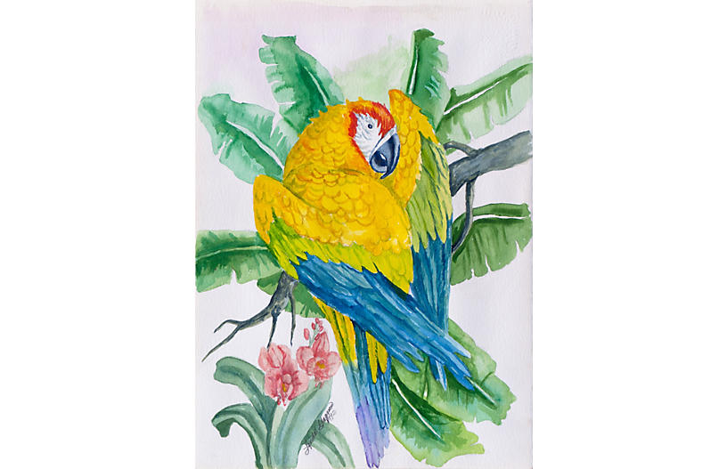 Blue & Gold Macaw by Linda Gagnon,1992