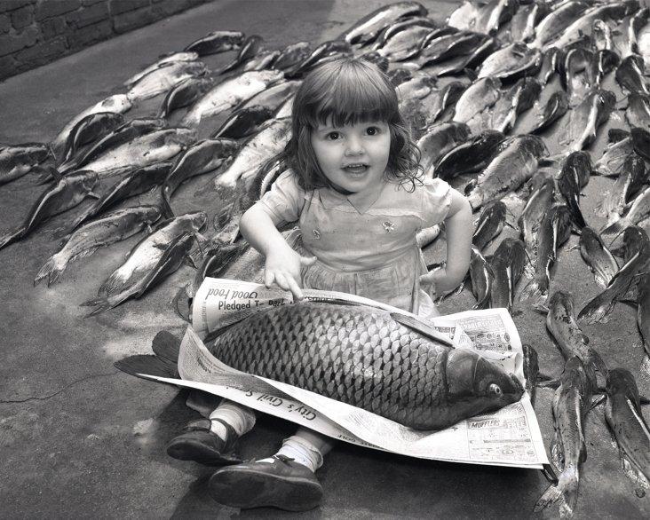 Two-Foot Carp, 1960