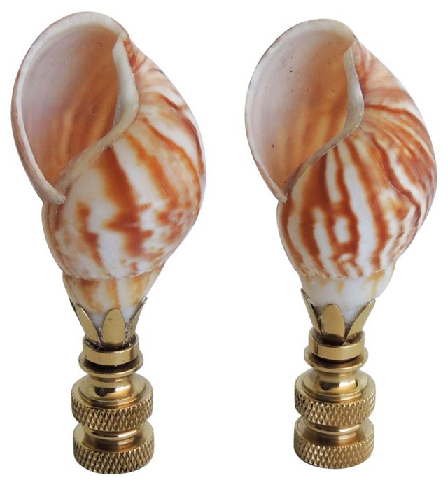 Ocean Brown Shell Finial, Pair