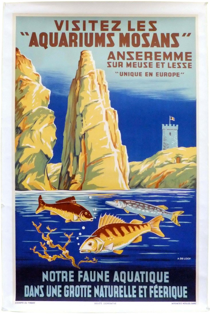 Aquariums Mosans Poster