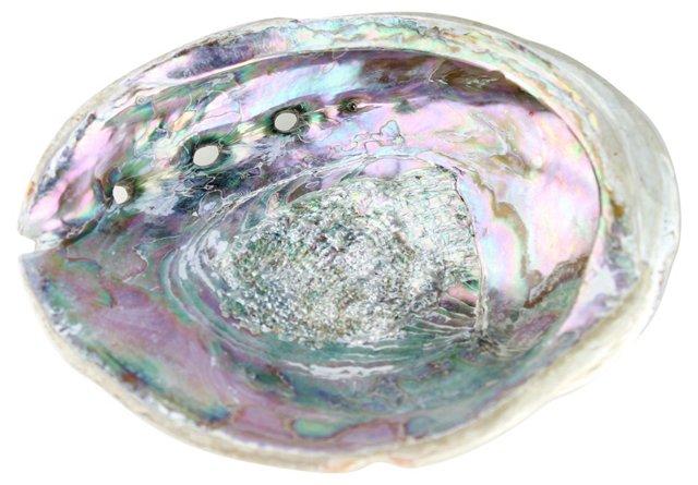 Pink Abalone Shell