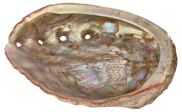 Large Pink Abalone Shell