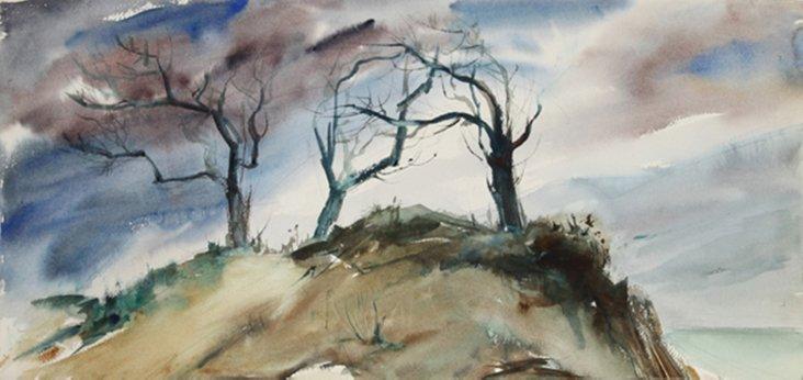 Nissequogue Trees