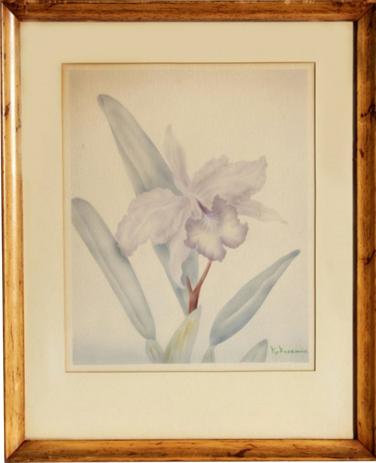 Lavender Iris by Tip Freeman