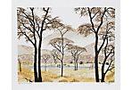 African Landscape by Caroline Schultz