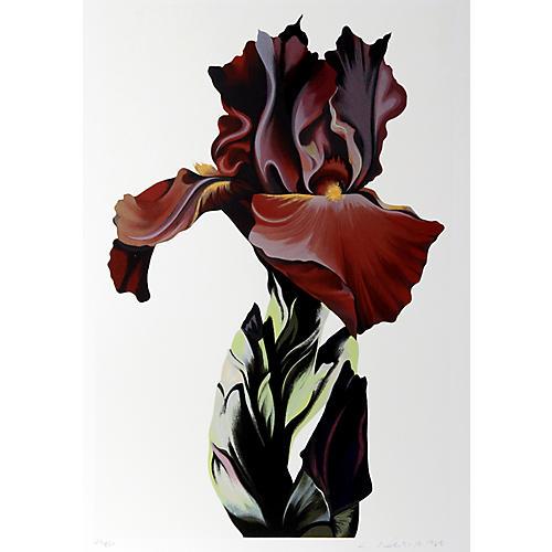 Burgundy Iris by Lowell Blair Nesbitt