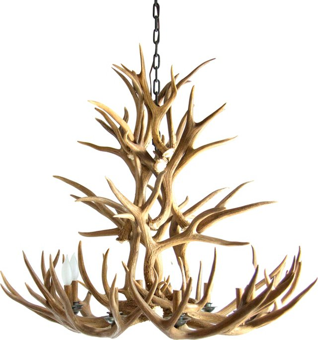 Custom Wyoming  Antler Chandelier