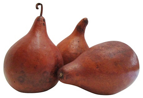 Natural New Mexico Gourds, S/3