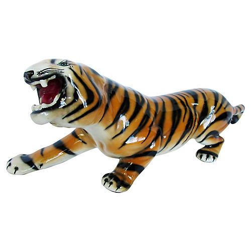Italian Bengal Tiger