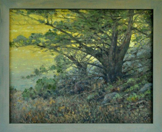 Sunset Oaks