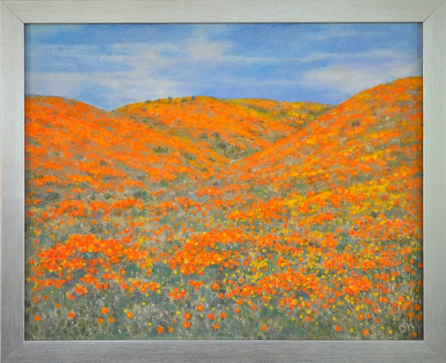 Poppy-Covered Hills