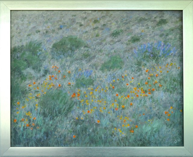 Poppies & Wild Flowers