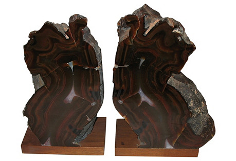 Half Fossilized Wood Bookends