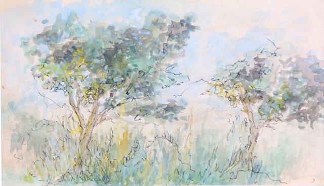Watercolor  Glade