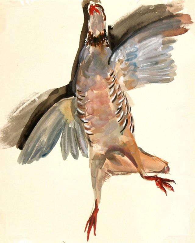 Bird Hunt, C. 1960