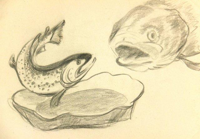 Fish, C. 1960