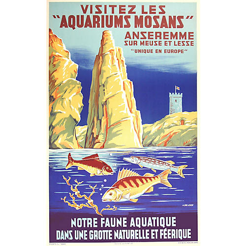 Acquarium Mosans Original Poster
