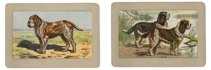 Hunting      Dog Prints, 1907, Pair