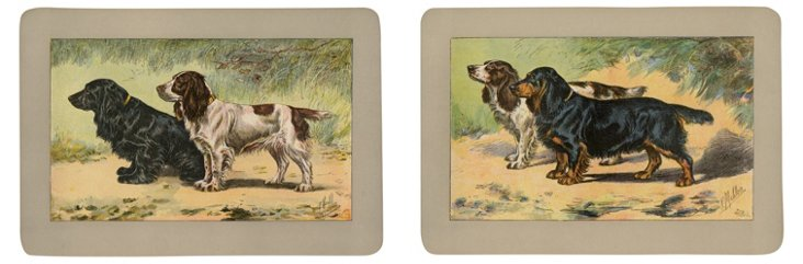 Hunting  Dogs,     1907, Pair