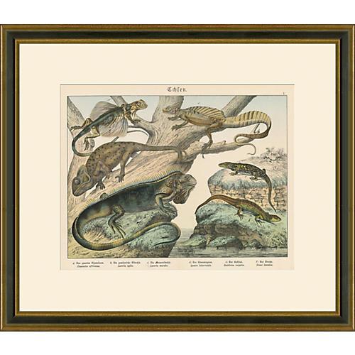 Lizards Print, 1889