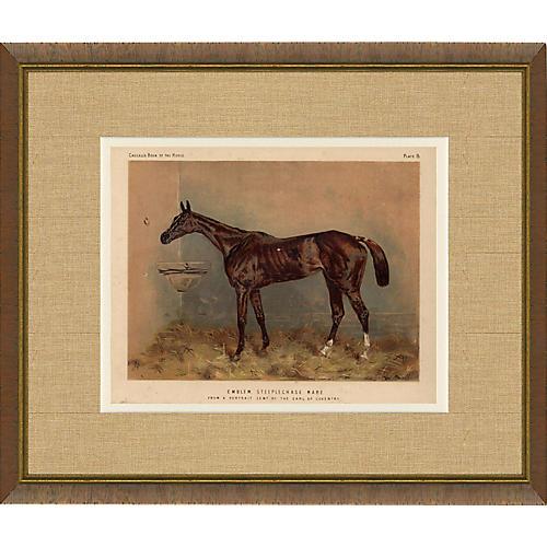 1870s Horse Print