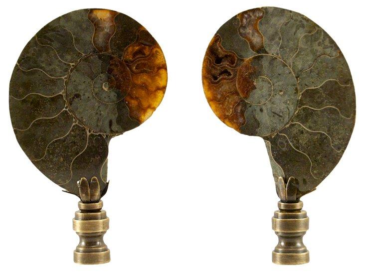 Ammonite    Finials,    Pair