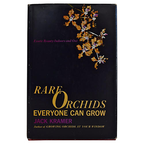 Rare Orchids Everyone Can Grow