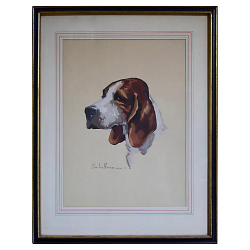 Foxhound Watercolor By Charles Bonner