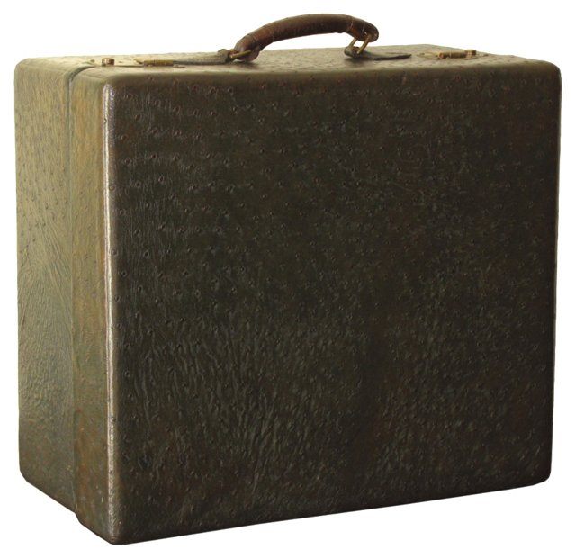 Ostrich Leather Travel Case