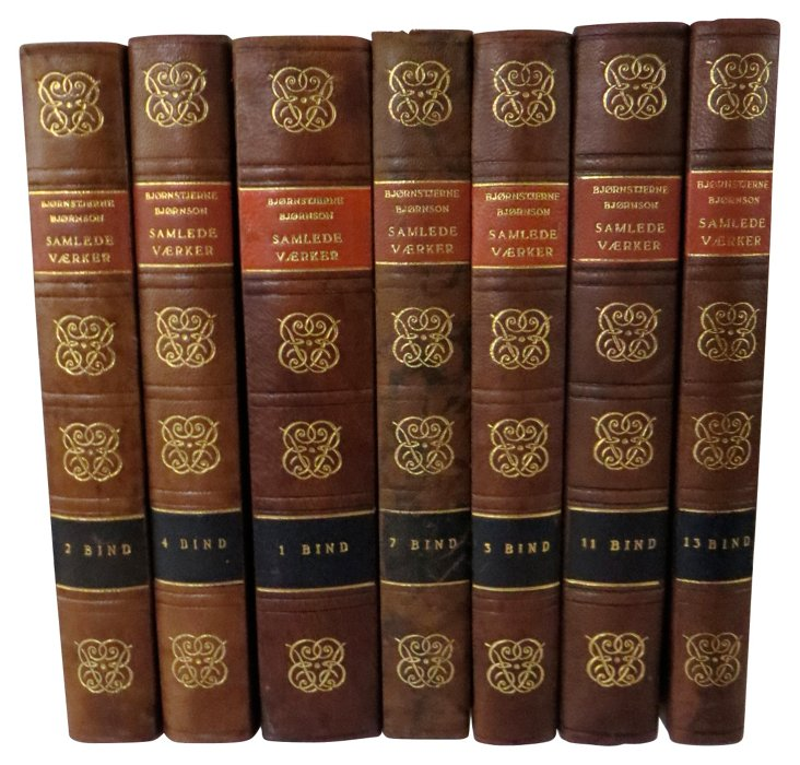 Decorative Leather Books, Set of 7