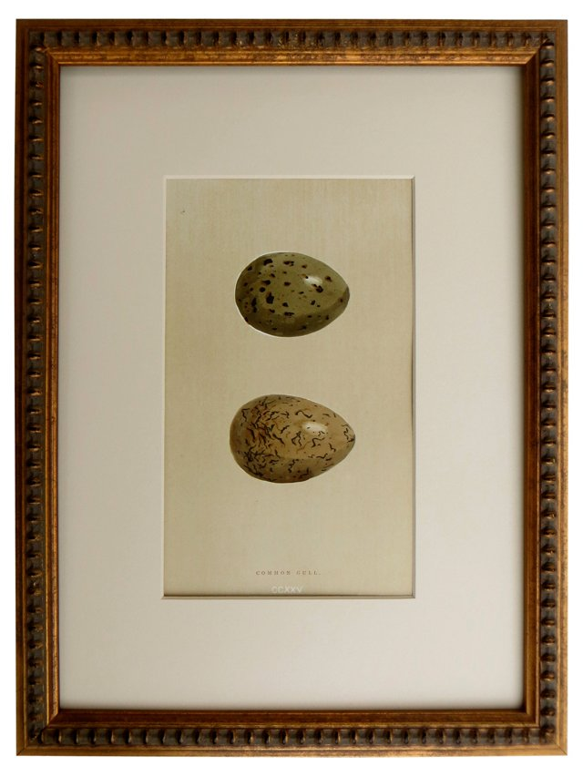 Egg      Engraving,         1896