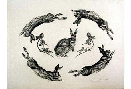 Rabbit Drawing by Ray M. Robinson