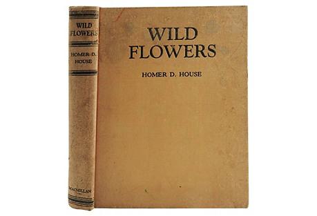 Wild Flowers, 1935