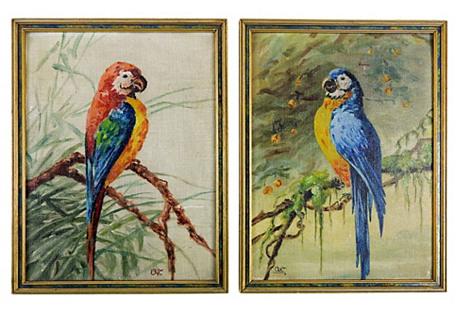 Parrot Portraits, S/2