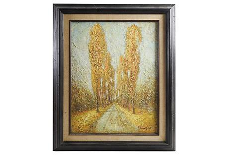 Poplar Tree-Lined Lane