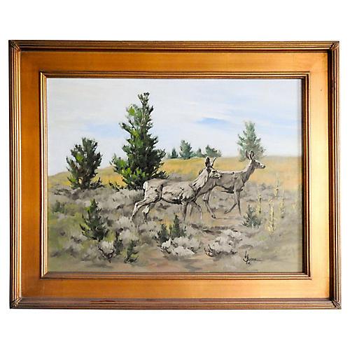 Mule Deer by Linda Budge