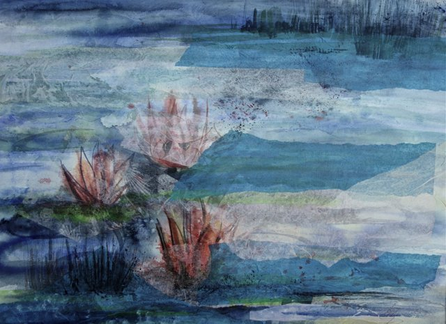 Water Lilies by Elly Drees