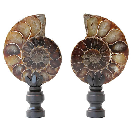 Ammonite Fossil Lamp Finials, Pair