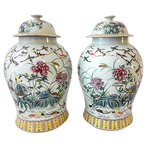 Famille Rose Ginger Jars, S/2