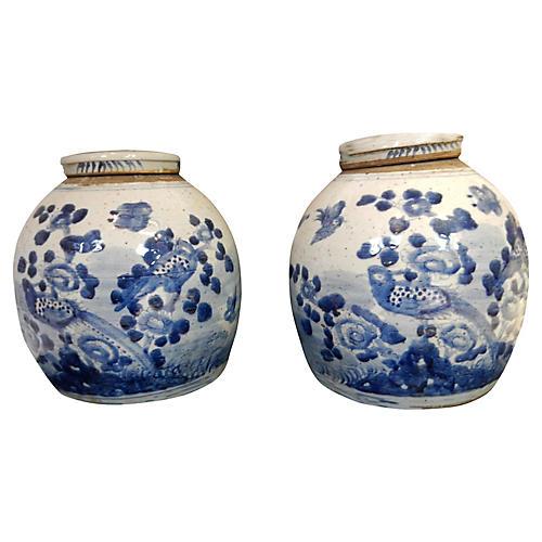 Blue & White Gingers Jars, Pair