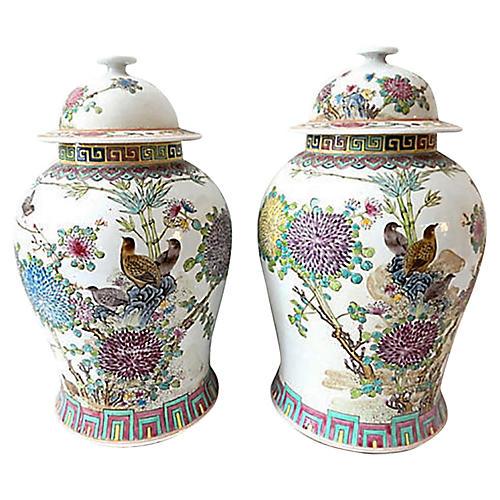 Famille Rose Ginger Jars