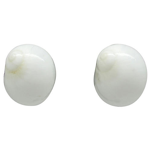 Conch Seashell Earrings